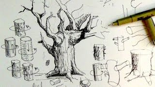 getlinkyoutube.com-Pen & Ink Drawing Tutorials | How to draw tree trunks & branches