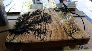 Fractal Wood burning 2 by Sandy