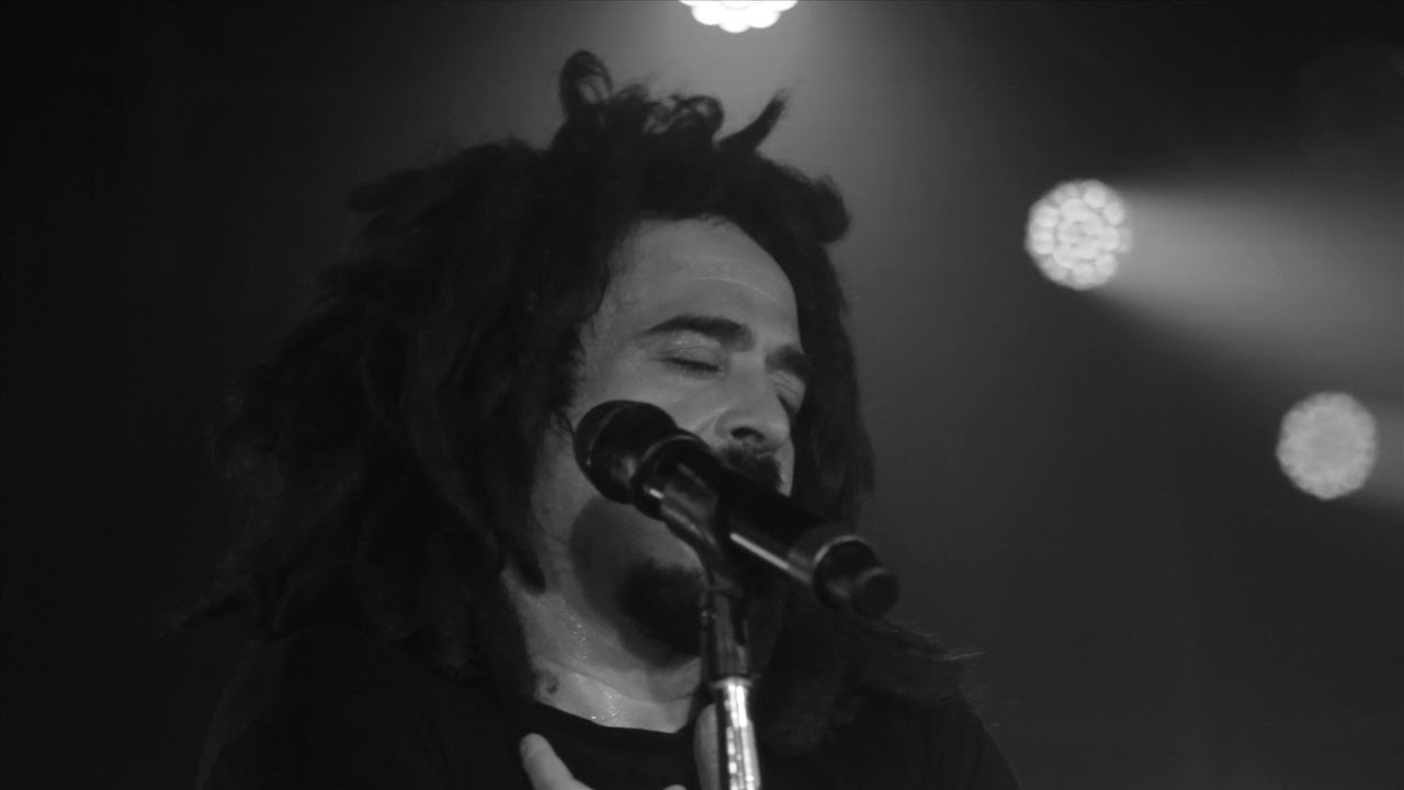 counting crows torrent