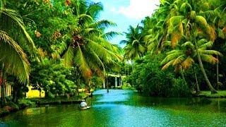 getlinkyoutube.com-Alleppey Backwaters Kerala,  India - 2014