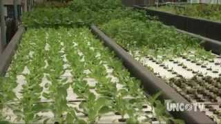 getlinkyoutube.com-Aquaponics Farming of the Future | NCScienceNow | UNC-TV