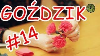 getlinkyoutube.com-Kwiatki z bibuły #14 - goździk