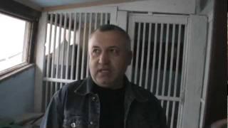 getlinkyoutube.com-Interviu columbofil cu Stefan Butucanu, Galati - Partea 1