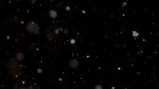 Beachfront B-Roll: Snow Falling (Free to Use HD Stock Video Special Effects)