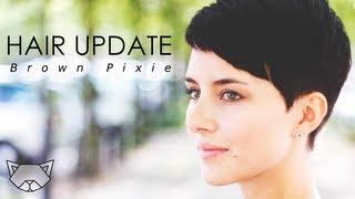 getlinkyoutube.com-Hair Update | Brown Pixie