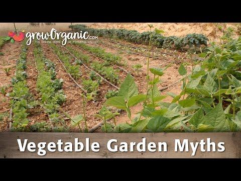 Vegetable Garden Myths