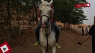 getlinkyoutube.com-اتفرج | كيف تصبح فارس وتحترف ركوب الخيل في أسرع وقت