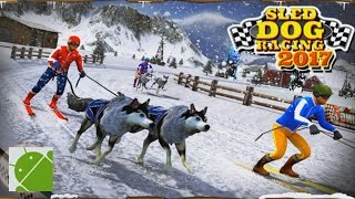 getlinkyoutube.com-Sled Dog Racing 2017 - Android Gameplay HD
