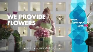 getlinkyoutube.com-THE ANSWER IS COLOMBIA