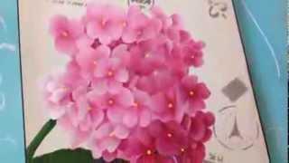 getlinkyoutube.com-Como pintar hortensias . Herminia Devoto con Mabel Blanco