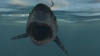 getlinkyoutube.com-Far Cry 3 - Shark Hunting + Giant Manta Rays