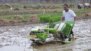getlinkyoutube.com-Mesin Tanam Padi Indo Jarwo Transplanter