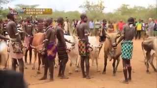 getlinkyoutube.com-소년에서 남자로 아프리카 하마르족 '알고' 성인식