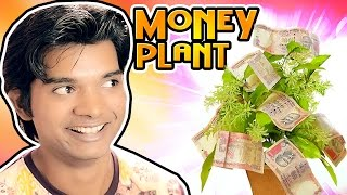 getlinkyoutube.com-If Money Plant is Real   Pakau TV Channel
