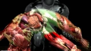 "getlinkyoutube.com-Mortal Kombat 9 Komplete Edition - All X-Rays on Skully ""Meat"" NPC (HD)"