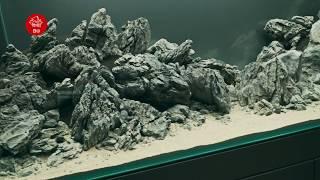 getlinkyoutube.com-The Road to the White Mountain 白山 Haku-san Aquascape 4KVideo #hakusan