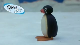 getlinkyoutube.com-Pingu: Pingu Runs Away from Home