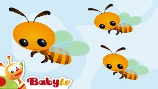 getlinkyoutube.com-Bee -  Learning Animal Sounds and Names for Kids & Toddlers | BabyTV