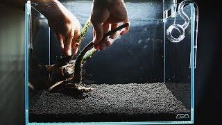 小さなアクアリウムの作り方 step.1 流木水草レイアウト|Sticks Aquascape with small tank