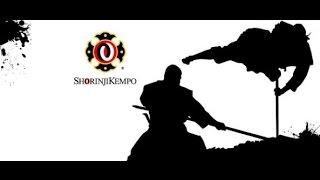 ►Demontration Shorinji Kempo By Arai Shoji Sensei.