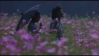 """getlinkyoutube.com-Il Colore Viola - """"Ogni cosa vuole essere amata..."""""""