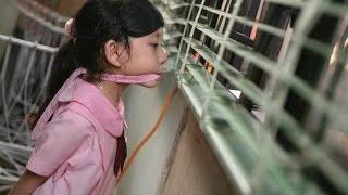getlinkyoutube.com-14岁女孩自演被绑架 向家人索要2万赎金