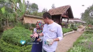 getlinkyoutube.com-Melamar Episode 92 : Rizal & Anindita Berawal Dari Reunian (3/3)