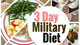 getlinkyoutube.com-LOSE 10 POUNDS IN 3 DAYS?! | 3 Day Military Diet Vlog | Does it Work?! + My Experience and Results