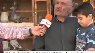 getlinkyoutube.com-حمام الزاجل مع ابو علياء 1