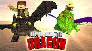 getlinkyoutube.com-Minecraft | HOW TO TRAIN YOUR DRAGON CHALLENGE - Toothless is Captured! (DRAGONS)