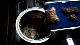 getlinkyoutube.com-Purificación de cera de abejas