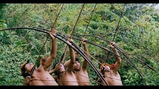 getlinkyoutube.com-Gazelle indigenous in the Amazon jungle , monkeys and boar hunt