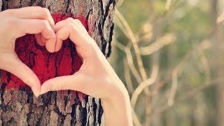 getlinkyoutube.com-صديقتي الغالية .. أحبك