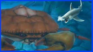 getlinkyoutube.com-BABY SHARK VS GIANT ENEMY CRAB BOSS! - Hungry Shark Evolution -  Shark Vs Enemy Shark!