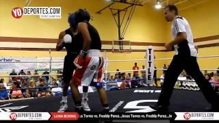Jesus Torres vs. Freddy Perez Joliet Luna Boxing 2015