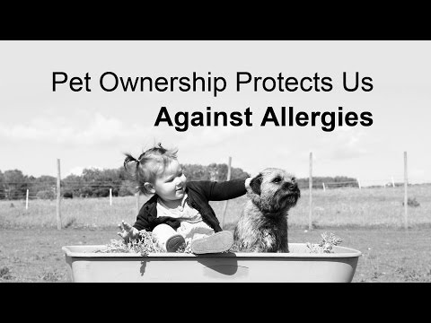 Pet Ownership Protects Us Against Allergies