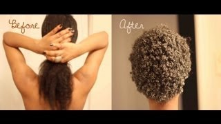 getlinkyoutube.com-The Big chop (Long Natural 4c Hair)