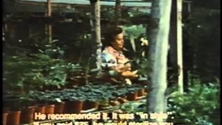 getlinkyoutube.com-La Operación- Personal Stories