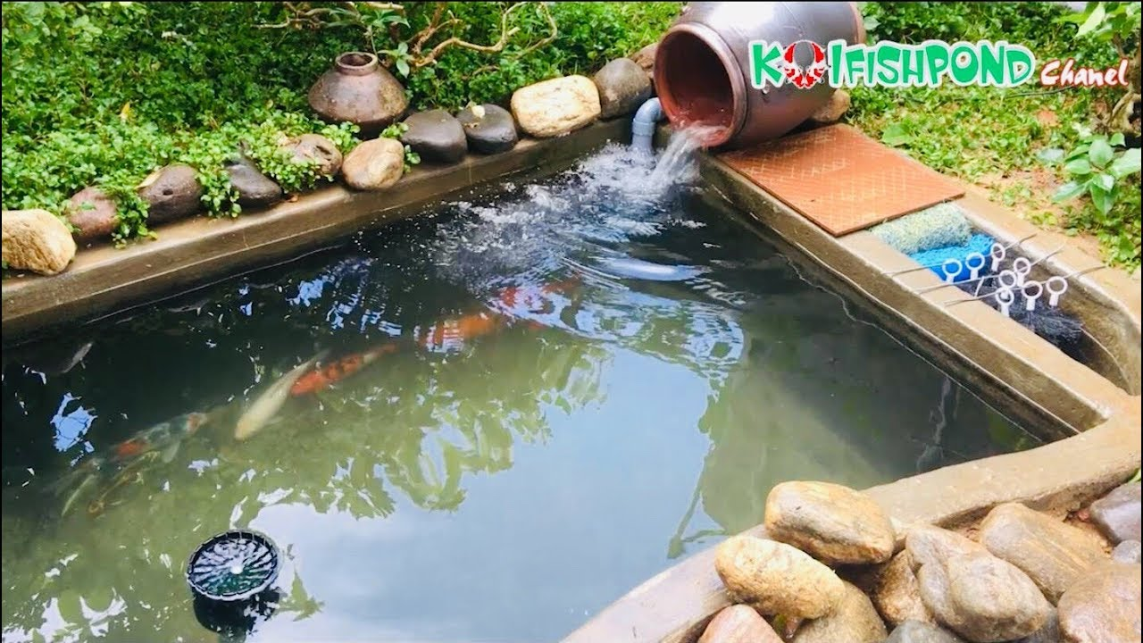 Koi Fish Pond Chanel