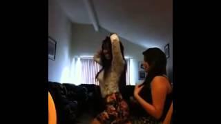 getlinkyoutube.com-Zmysłowy taniec