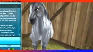 Star Stable Online - New Shire Colors - Shire Horse