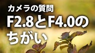 getlinkyoutube.com-【カメラの質問】F2 8とF4 0はかなり違いますか?お答えします【写真の疑問】