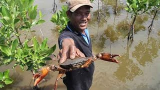 getlinkyoutube.com-จับปูทะเลยักษ์ด้วยมือเปล่าแบบมืออาชีพ @ มณีแดง โฮมสเตย์ (RedRuby-Homestay) แหลมสิงห์ จันทบุรี
