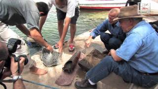 getlinkyoutube.com-Underwater Archaeology: Excavating the Nile with Dr Hawass