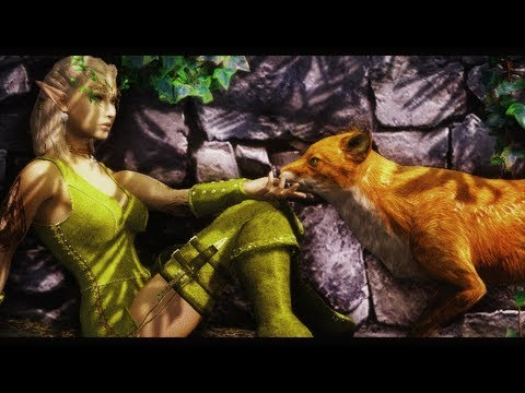 Skyrim: Empatia com Animais (Voice of the Sky)