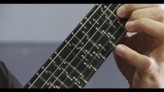 getlinkyoutube.com-Microtonal Guitar (Fixed Fret) - Tolgahan Çoğulu