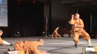 getlinkyoutube.com-Shaolin Warriors Animal Forms