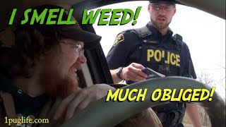 getlinkyoutube.com-what to do when the cops smell weed!