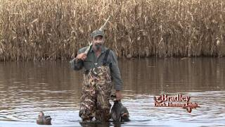 getlinkyoutube.com-Bradley Hunt Club - Flooded Corn - Part 1