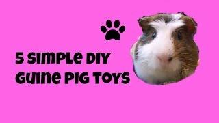 5 Simple DIY Guinea Pig Toys